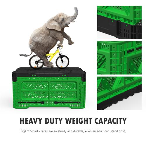 [BIGANT] Heavy Duty Collapsible & Stackable Plastic Milk Crate [Medium Size/ 12.7 Gallons] - Green