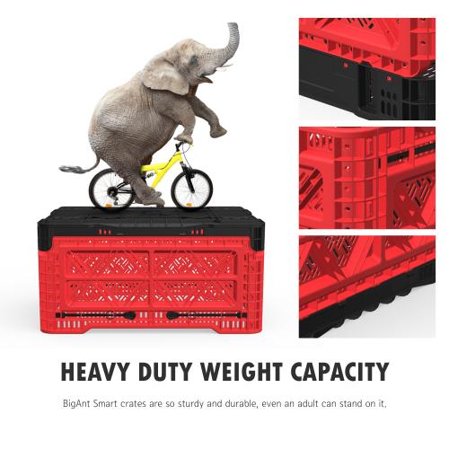 [BIGANT] Heavy Duty Collapsible & Stackable Plastic Milk Crate [Medium Size/ 12.7 Gallons] - Red