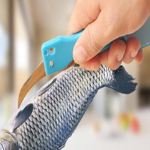 Fish Scale Remover, Super Efficient Scaler and Knife, Steel Brush Shaver Remover, Cleaner, & Descaler - Perfect Fishing Tool!