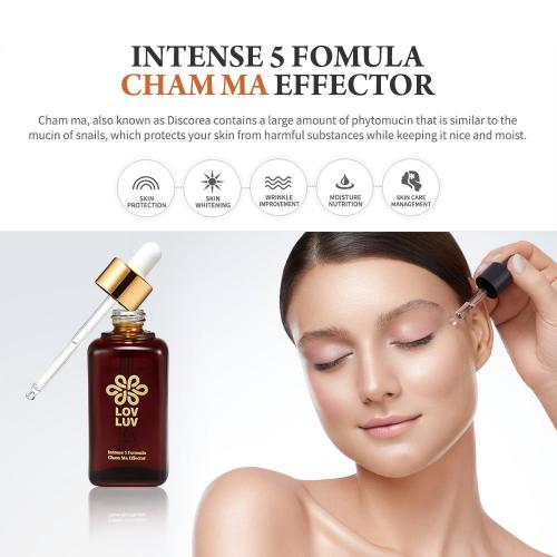 LOVLUV Intense Skin Formula Cham Ma Effector. K-Beauty Facial Serum Made with Yam for All Skin Types. Moisturizing and Keeps Your Skin Healthy. Has Anti-Aging Properties [50ml/1.69 oz]