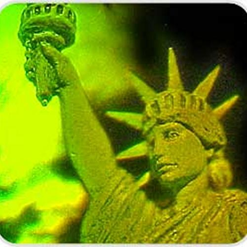 Lady Liberty Holograms Screen Sticker
