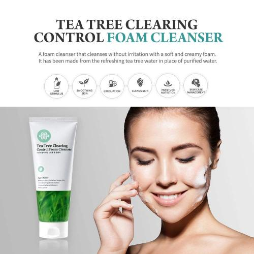 LOVLUV Tea Tree Foaming Facial Cleanser. K Beauty Daily Face Wash with Natural Ingredients and Anti Aging Properties [6 Oz]